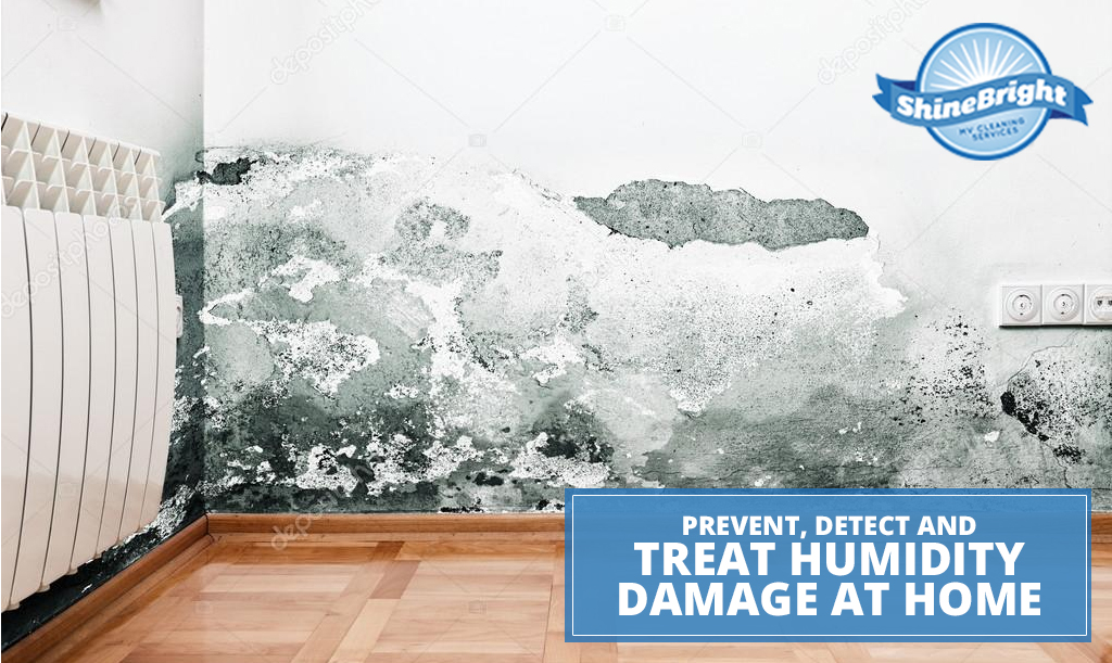 Prevent, Detect and Treat Humidity Damage at Home